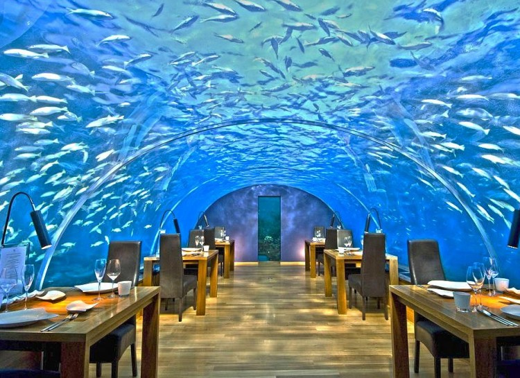 Underwater, Maldives
