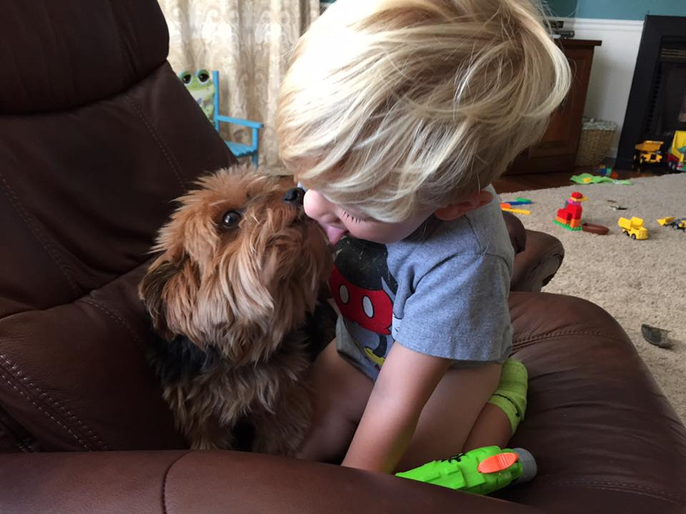 My little man making out with our yorkie. Actually he said he wanted to kiss her and I thought he meant human kiss, and I said aww let me get a picture! And this is what I got! - Amy Elizabeth Jackson